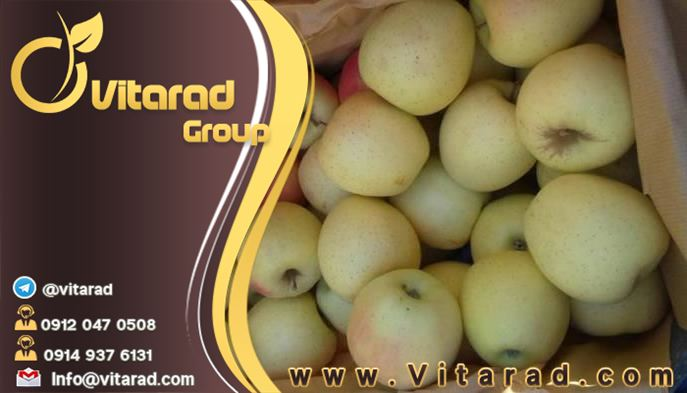 Buy Iranian Apple fruit online at affordable prices