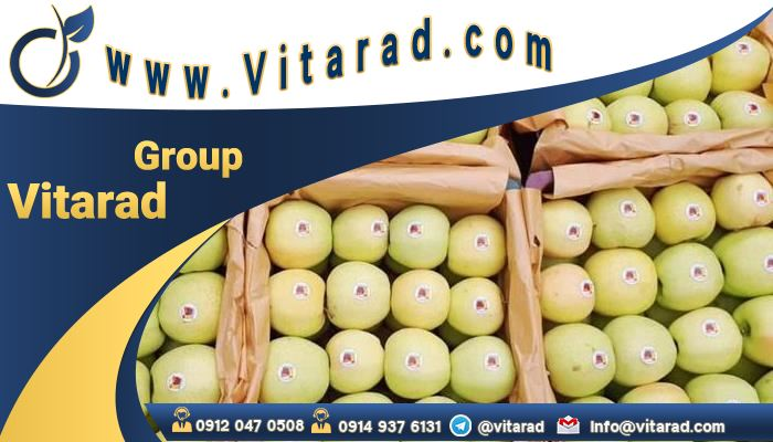 Prices per ton of Iranian yellow apple