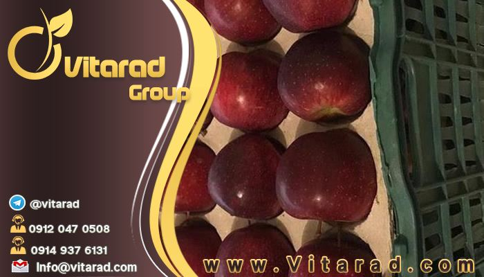 Tips for Buy red apples from iran