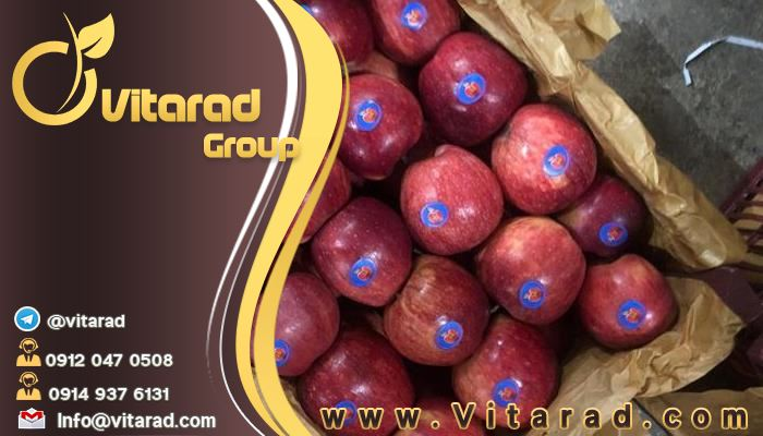 Export of red apple from Iran