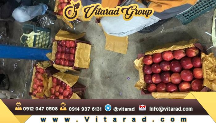 Wholesale sale of Iranian red apple
